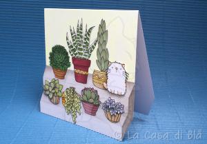 succulent_cat2