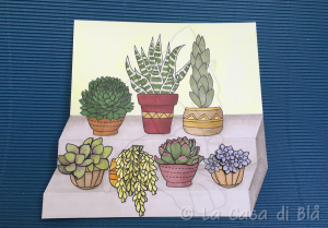 succulents_cat10