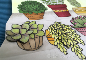 succulents_cat8